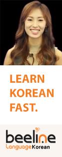 Learn Korean Fast (Vertical banner)