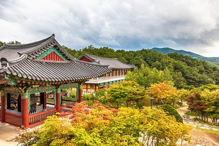 Teaching English in Daegu Korea | Amazing School Looking for 2 Teachers for November