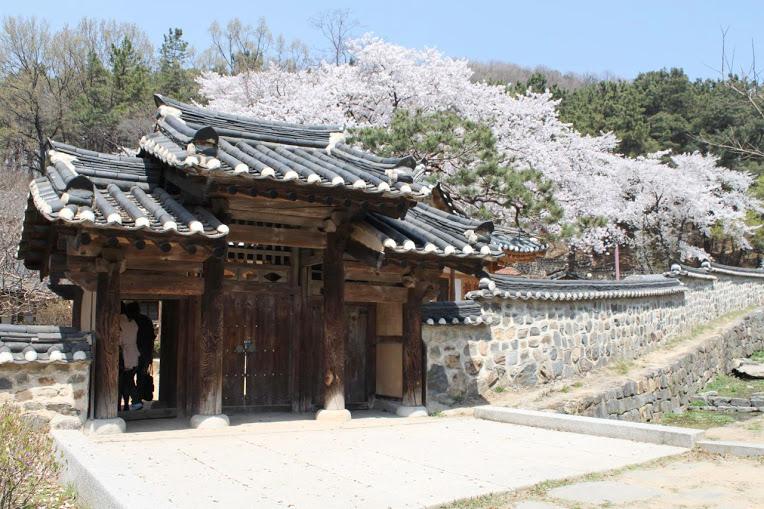 Teaching in Korea | Teach in Daejeon in July